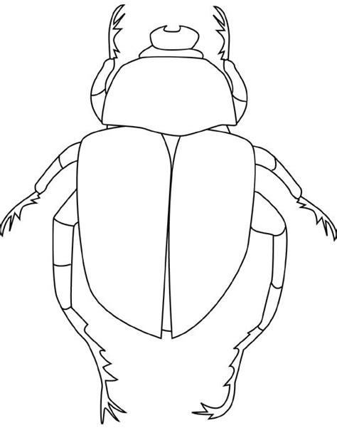 printable beetle coloring pages bugs drawing coloring