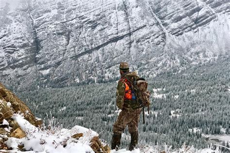 montana elk hunting outfitter guide  lazy