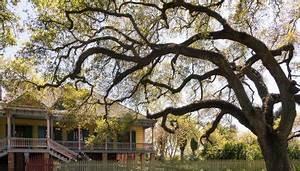 Orleans Sud Auto : tour del texas e del profondo sud in auto xplore america ~ Maxctalentgroup.com Avis de Voitures