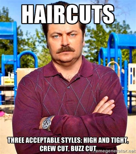 Ron Meme - ron swanson as a cultural artifact new media literacy comm2f00
