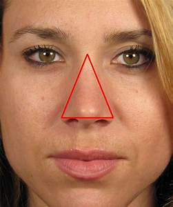 asian nose vs caucasian nose - Google Search | Rhinoplasty ...