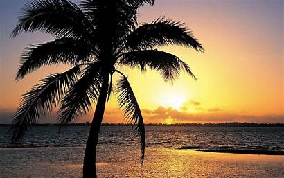 Tropical Island Sunset Wallpapers Cave