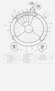 Cell Cycle Labeling Worksheet Answers  U2014 Excelguider Com