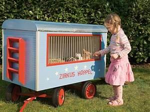 Kaninchenstall Selber Bauen Für Draußen : die 25 besten ideen zu kaninchenstall auf pinterest ~ Lizthompson.info Haus und Dekorationen