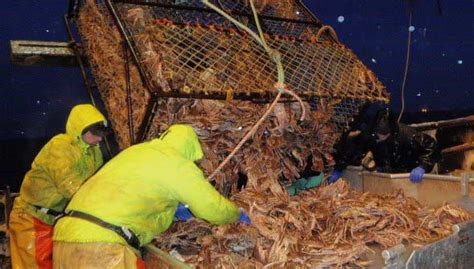 Crab Fishing Boat Jobs by Alaska Fishing Jobs Current Job Vacancies Alaskajobfinder