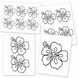 Flower Template Hawaiian Hibiscus Printable Templates Flowers Drawing Lei Luau Stencils Printables Crafts Hawaii Stencil Paper Icing Royal Tropical Clipart sketch template
