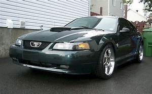 Dark Satin Green 1999 Ford Mustang GT Coupe - MustangAttitude.com Photo Detail