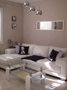 Salon Gris Blanc : salon photo 4 25 3498684 ~ Dallasstarsshop.com Idées de Décoration