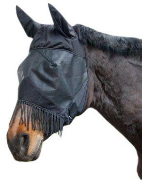 fliegenschutz pferd bremsenfallen fliegendecken  im