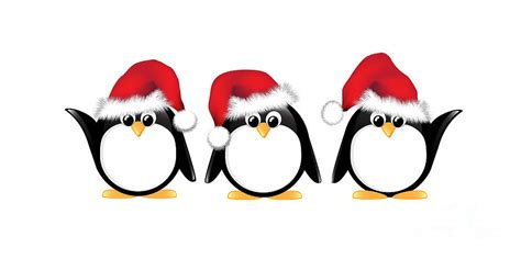 Check out this fantastic collection of christmas penguin wallpapers, with 39 christmas penguin background images for your desktop, phone or tablet. Christmas Penguins Isolated Photograph by Jane Rix