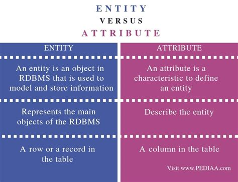 difference  entity  attribute