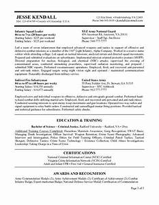 Federal government resume builder usajobs template sample for Federal government resume builder