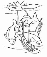 Pond Coloring Fish Clipart Drawing Pages Colouring Duck Swim Printable Swimming Clip Sheets Days Cliparts Library Trending Last Getdrawings sketch template