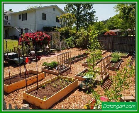 backyard vegetable garden ideas home landscaping