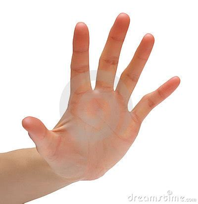 Five Fingers by Five Fingers Royalty Free Stock Image Image 11282876