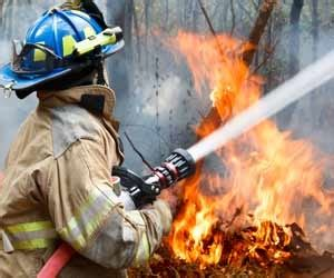 firefighter employment issues work conditions forest