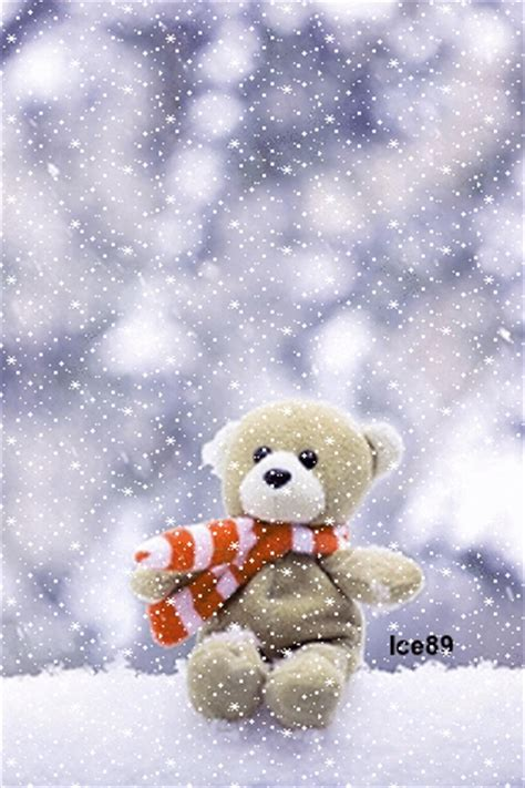 teddy bear   snow pictures   images