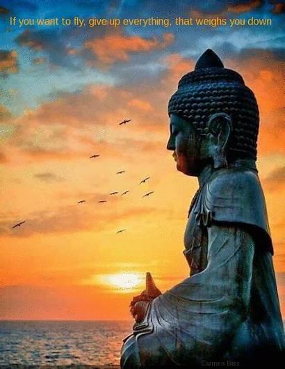 Buddha Quotes Peace Gifs Inner Meditation Buda
