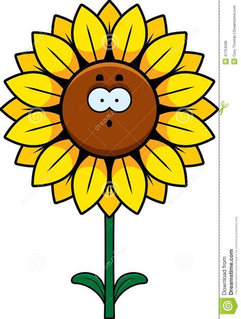 surprised sunflower stock vector illustration  plant