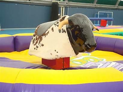 Bull Mechanical Hire Premium Fun Bigfun