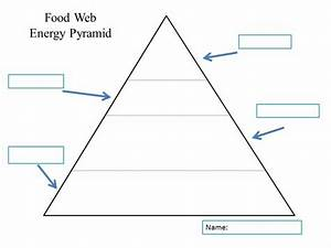 Fishbone Diagram Teaching Template