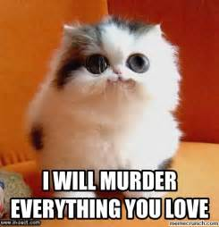 Cutest Memes - cute cat