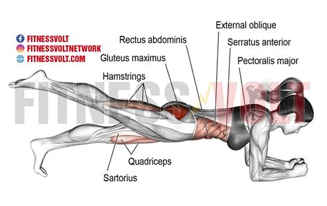 One-leg Front Plank