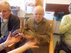 Care Home Provides Special Opportunity For Nature Loving ...