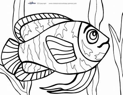 Coloring Ikan Mewarnai Ayo Sea Under Gambar