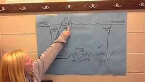 Emmie Anna Steven Brock U0026 39 S Science Ocean Floor Diagram
