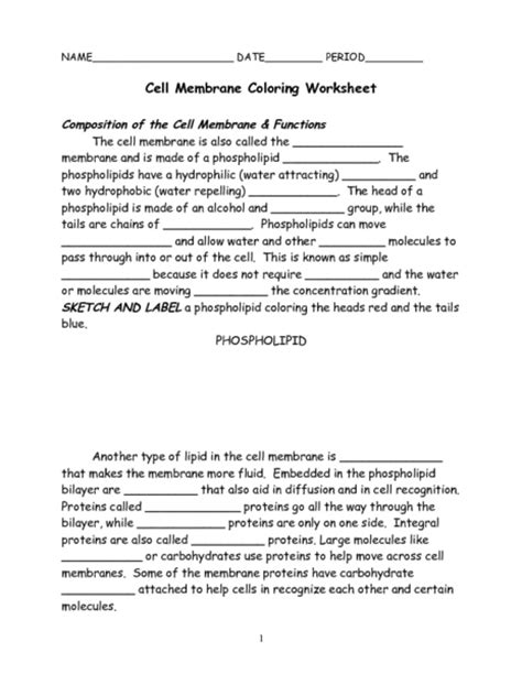 Cell Membrane Coloring Worksheet Worksheet For 7th  9th Grade  Lesson Planet