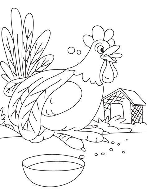 cock  doodle  coloring page   cock
