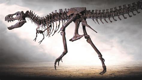 gigantische tiere der urzeit dinosaurier