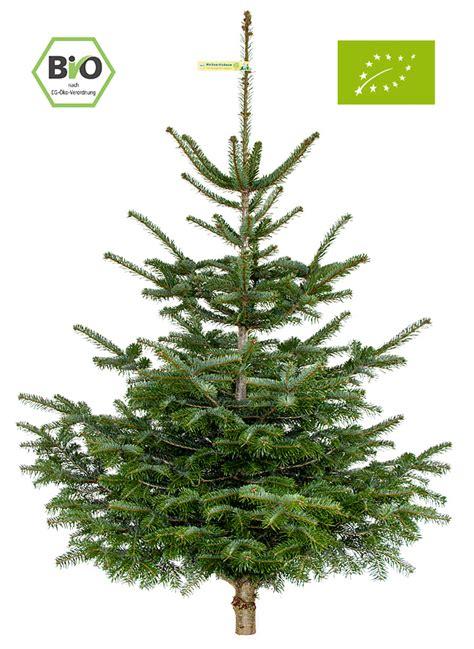 zur bestellung onlineshop weihnachtsbaum bestellen