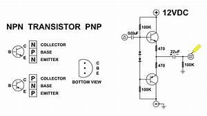 Transistor Push Pull Amplifier  For The Beginner  No