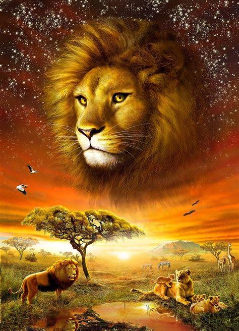 Lions Lion Art Animals
