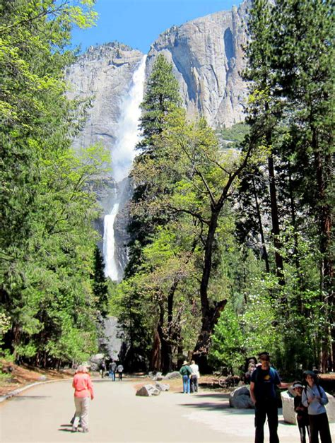 Visiting National Parks Ways Boost Your Adventure