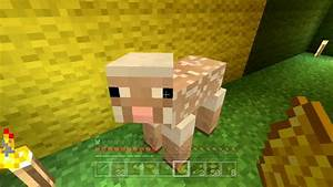 Minecraft Xbox The Hungry Sheep 90 YouTube
