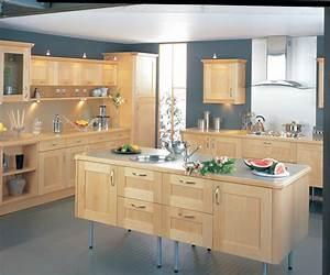 Beautiful Maple Kitchen Cabinets — BITDIGEST Design