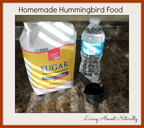 diy hummingbird food 14 inspiring spring ideas onekriegerchick