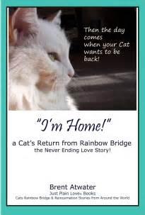 Rainbow Bridge Cat Poem