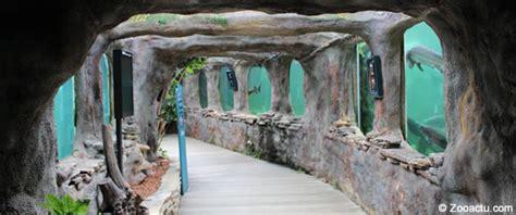 l aquarium du perigord noir visite de l aquarium du p 233 rigord noir zooactu