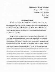 essay on problem of price rise essay paid bowling alone america's declining social capital essay