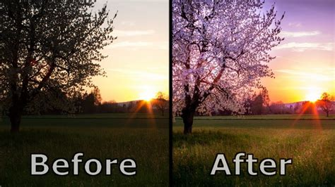 nature photographs real  professional picture editing