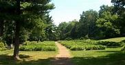 Nichols Arboretum - USA - Gardens, Parks, Squares and Open ...