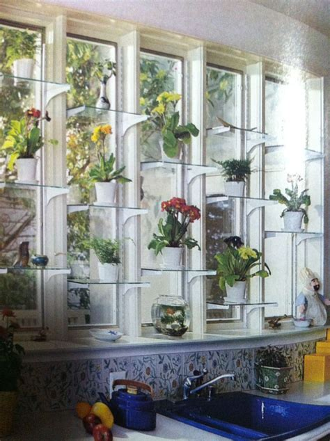 Plant Window by Window Shelves For Plants Crafthubs Plant Windows In