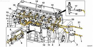 34 Cummins Isc Fuel System Diagram