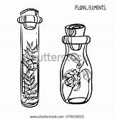 Bottle Coloring Drawing Bottles Poison Glass Potion Clip Sketch Adults Pages Plants Template Vector Camellia Peas Sweet Shutterstock Isolated sketch template