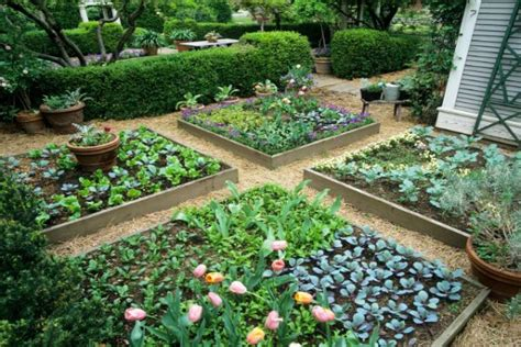 ways   rid  weeds   garden usemyprocom