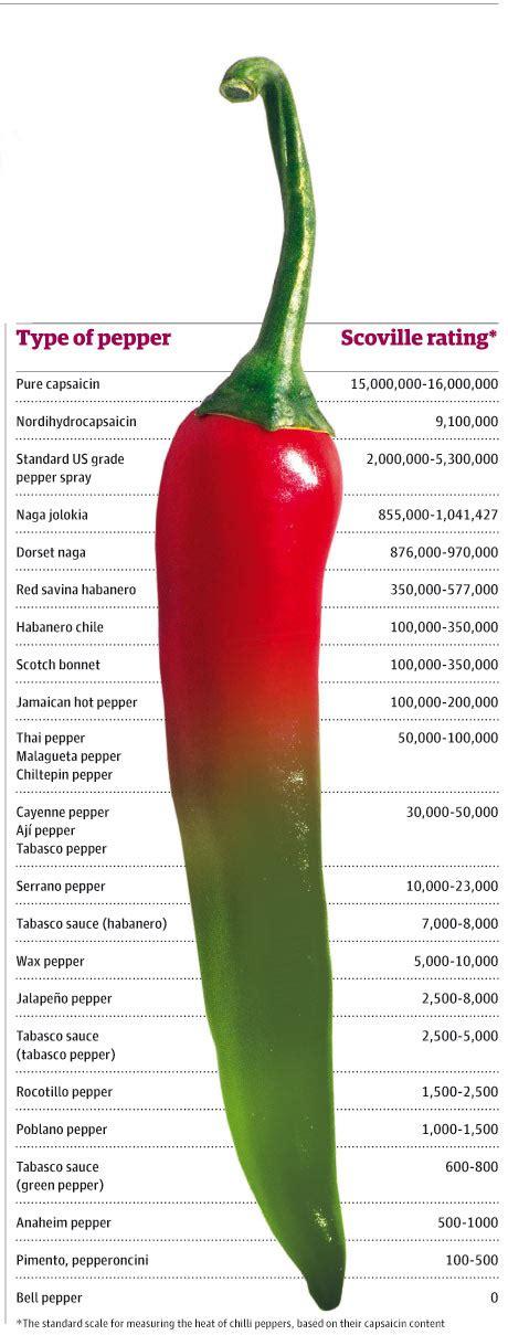 chillies proper authentic